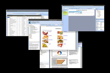 可视化报告生成器FastReport VCL功能指南:Lazarus在Linux上的Web报告